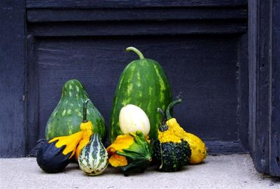 Gourds (Small)